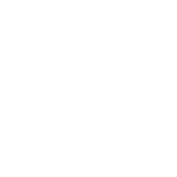Lugo's Martial Arts White Logo