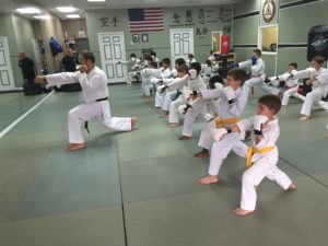 Lugo's Martial Arts-Kid's Karate Class