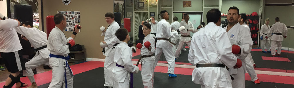 http://www.lugosmartialarts.com/wp-content/uploads/2018/03/Lugos_Martial_Arts_Karate_Class.jpg