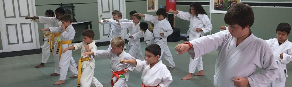 http://www.lugosmartialarts.com/wp-content/uploads/2018/03/Lugos_Martial_Arts_Kids_Karate_Class.jpg