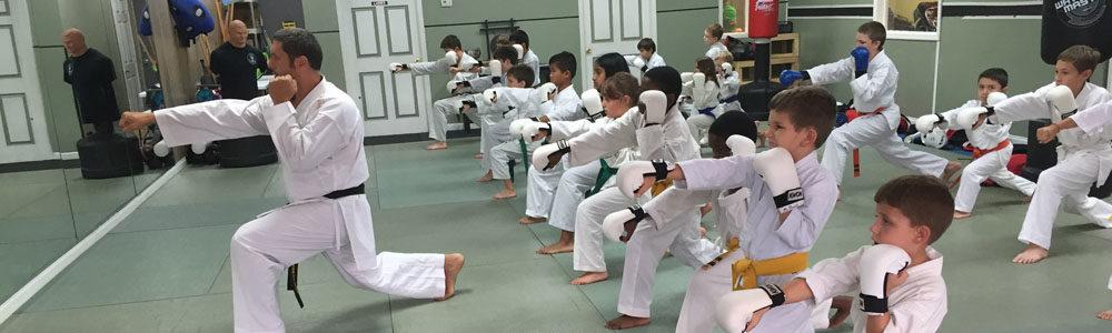 http://www.lugosmartialarts.com/wp-content/uploads/2018/03/Lugos_Martial_Arts_Kids_Karate_Class2.jpg