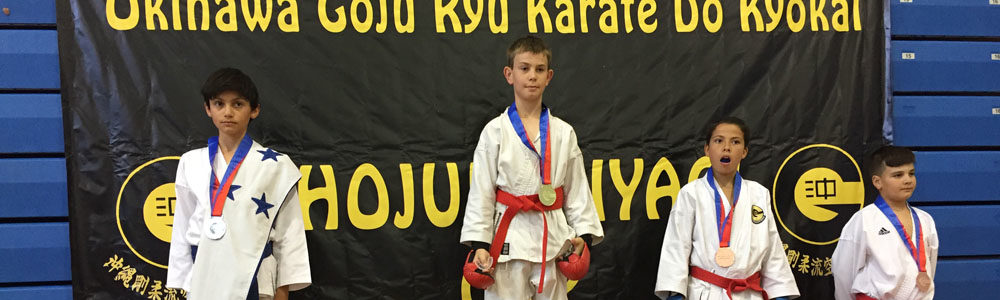 http://www.lugosmartialarts.com/wp-content/uploads/2018/03/Lugos_Martial_Arts_Kids_Karate_Tournament.jpg