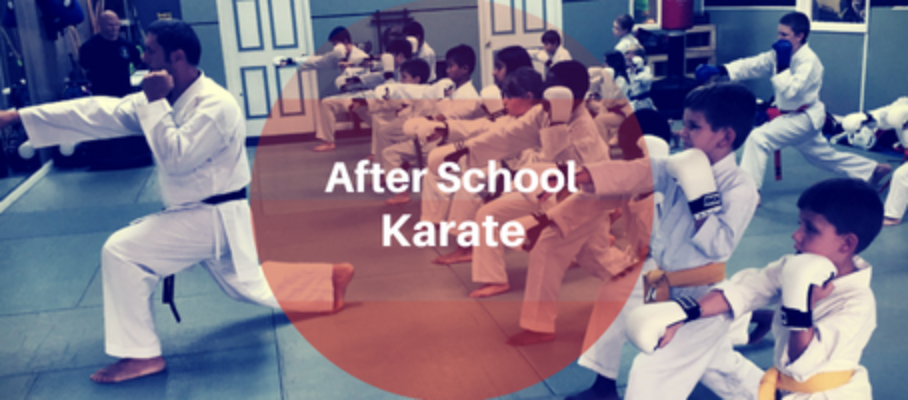 After School Karate Program
